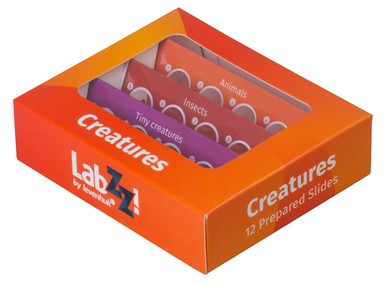 Набор микропрепаратов Levenhuk LabZZ C12, существа